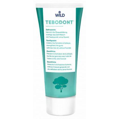 Зубная паста Tebodont с маслом чайного дерева